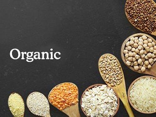 400x300 wholefoods organics.png?ch=width%2cdpr%2csave data&auto=format%2ccompress&dpr=2&format=jpg&w=250&h=187