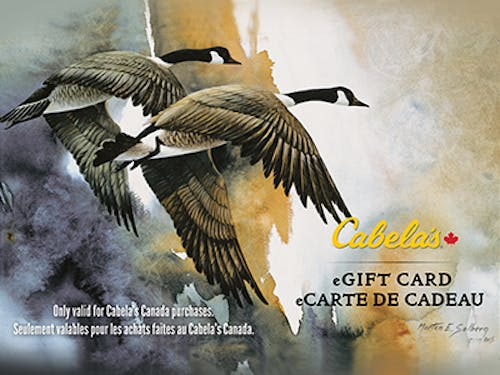 400x300 ic cabelas ca.png?ch=width%2cdpr%2csave data&auto=format%2ccompress&dpr=2&format=jpg&w=250&h=187