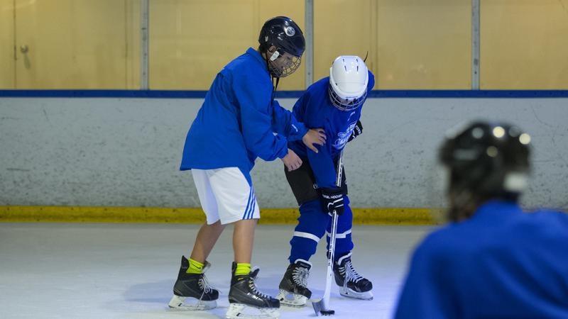 Flipgive hockey grant sdc3