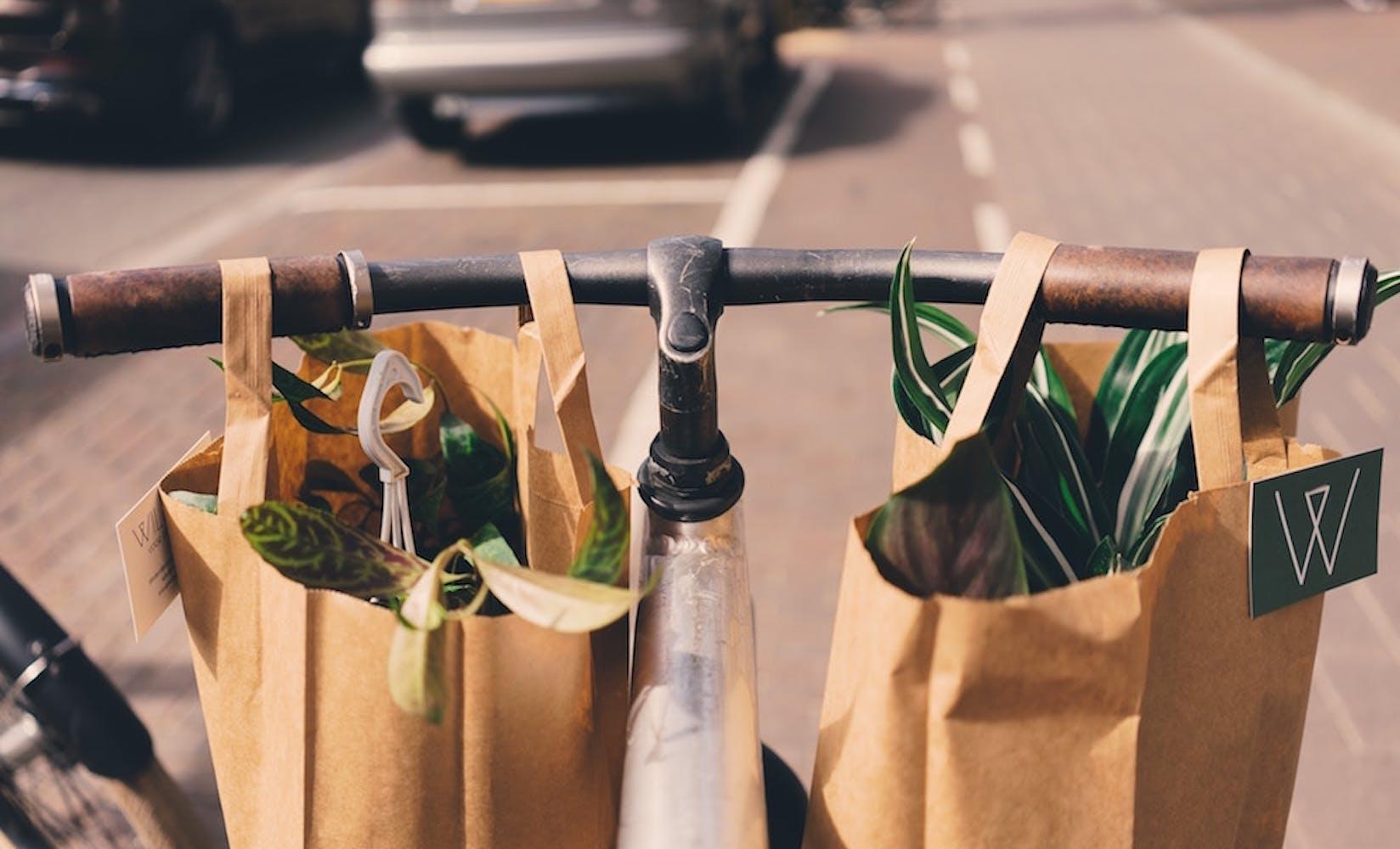 Grocery bagging fundraiser flipgive