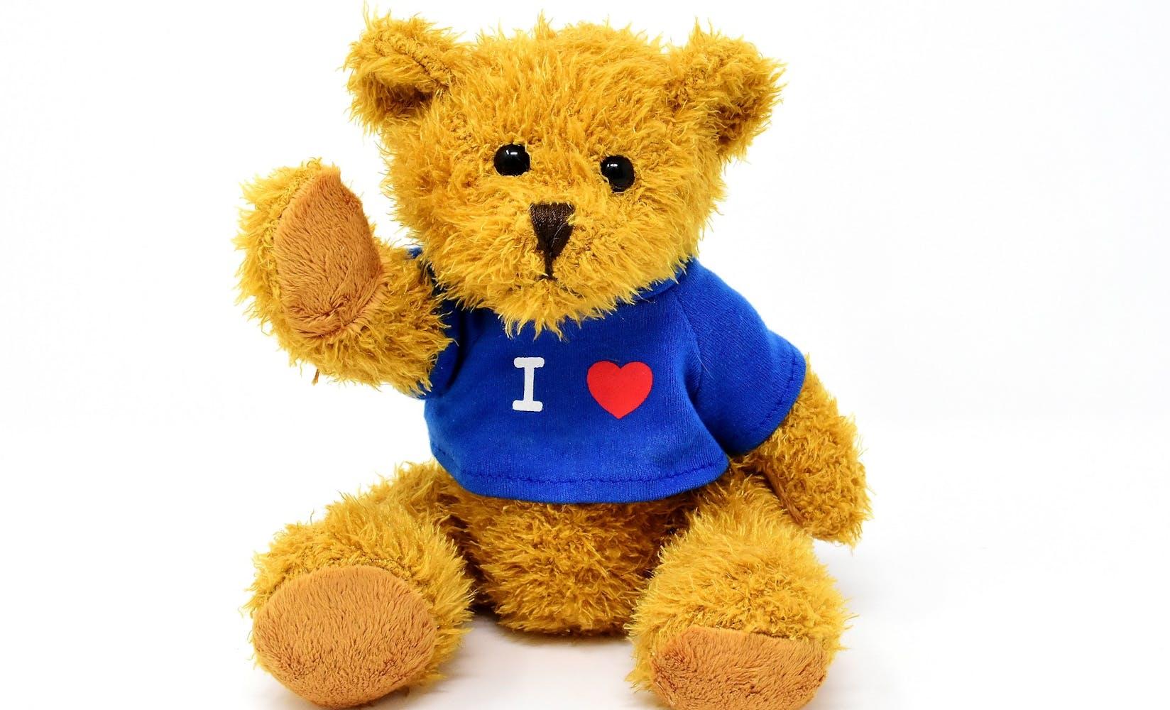 Teddy 3296851 1920