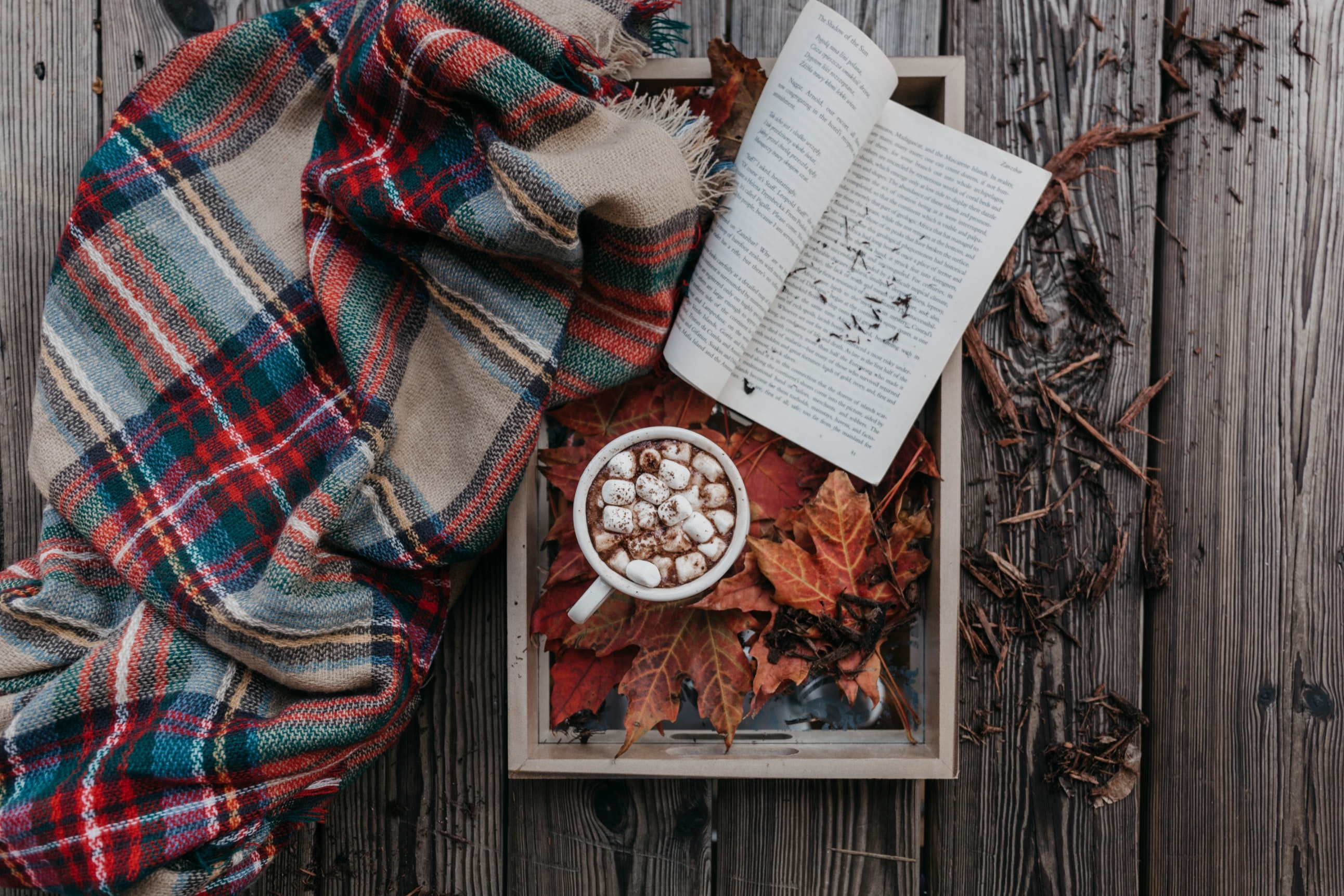 10 Cozy Fall Essentials that you need in your life